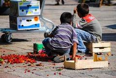 在碎红色樱桃驱散的两个男孩 库存图片
