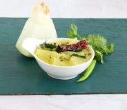 在碗的南瓜水鹿南印地安素食食物 库存图片