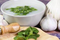 在碗的大蒜汤 库存照片