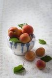 在碗的新鲜的杏子 库存图片