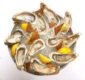 在碗的新鲜的牡蛎有冰的 免版税图库摄影