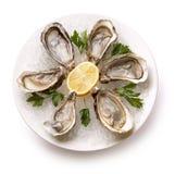 在碗的新鲜的牡蛎有冰的 库存照片