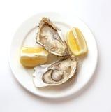 在碗的新鲜的牡蛎有冰的 图库摄影