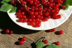 在碗的新鲜的红浆果 图库摄影