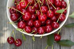 在碗的新鲜的酸樱桃 库存照片