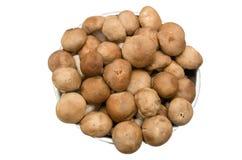 在碗的新鲜的什塔克菇在白色背景 库存图片