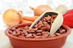 在碗的未加工的扁豆,与选择聚焦的宏指令 库存照片