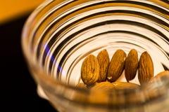在碗的杏仁种子 库存照片