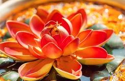 在碗的桃红色莲花有淡水的 印度教和佛教的神圣的植物 免版税库存照片