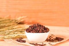 在碗的棕色未加工的米有木tabl的干粮食作物的 库存照片