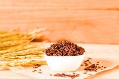 在碗的棕色未加工的米有木tabl的干粮食作物的 免版税库存图片