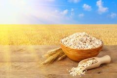 在碗的燕麦粥有在背景的领域的 免版税图库摄影