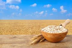 在碗的燕麦粥有在背景的领域的 库存图片