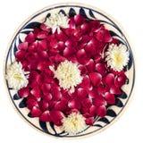 在碗的玫瑰花瓣,被隔绝 免版税库存照片