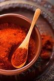 在碗的红色碎辣椒粉香料 图库摄影