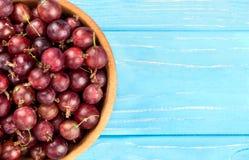 在碗的红色鹅莓 库存图片