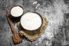 在碗的自然酸奶 图库摄影