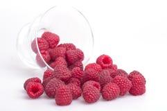 在碗的莓 免版税库存照片