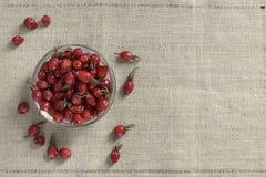 在碗的野玫瑰果 图库摄影