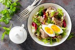 在碗的金枪鱼色拉 bufala食物意大利地中海无盐干酪 与罐装金枪鱼的新鲜的沙拉 健康饮食的食物 库存照片