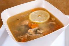 在碗的鱼汤 库存图片