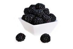 在碗的黑莓 免版税库存照片