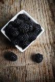 在碗的黑莓 图库摄影