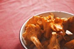 在碗的黄蘑菇蘑菇 免版税库存图片