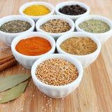 在碗–在前景的芥菜籽的香料 免版税库存图片