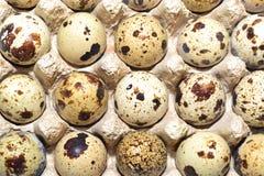在磁带的鹌鹑蛋 免版税库存照片