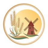 在磨房的脚的麦子,在一个大太阳的商标下 图库摄影