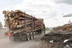 在磨房的采伐的卡车日志 库存图片