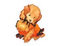 在礼服水彩的狗小狗 免版税库存照片