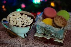 在礼物盒的五颜六色的蛋白杏仁饼干 库存照片
