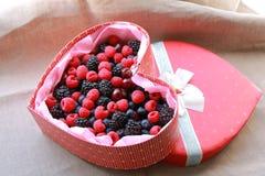 在礼物红色箱子的被分类的野生莓果 免版税库存图片