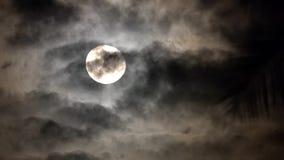 在神奇黑暗的夜空的满月 鬼的题材为万圣夜 在月光的剧烈的云彩 股票视频