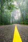 在神秘的有雾的森林风景的柏油路 免版税库存图片