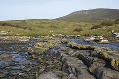 在福克兰群岛的口岸Egmont 库存照片