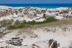 在福门特拉岛海滩的石头 库存图片