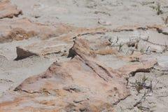 在福门特拉岛海滩的石头 免版税库存照片