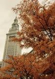 在秋叶后的终端塔 免版税库存照片