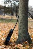 在秋叶的吉他 图库摄影