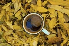 在秋叶的咖啡杯 免版税图库摄影