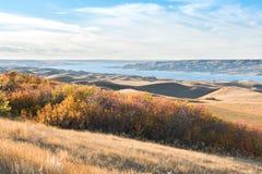 在秋叶的日落在山坡 免版税库存照片