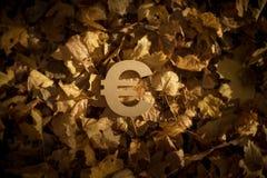 在秋叶的欧元货币符号在晚上太阳 库存照片