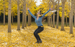 在秋叶的深色的模型 库存照片