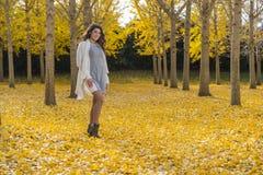 在秋叶的深色的模型 免版税库存照片