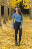 在秋叶的深色的模型 图库摄影