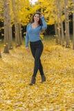 在秋叶的深色的模型 免版税图库摄影