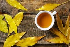 在秋叶的茶杯 库存图片
